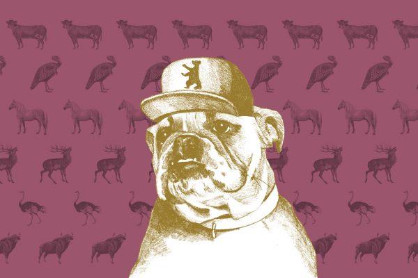 Gezeichneter Hunde mit Berlin-Cap